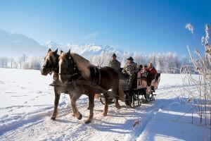pferdeschlitten (1)