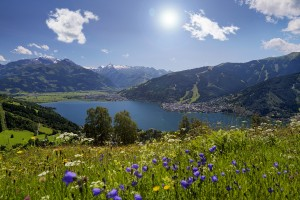 view-at-the-region-with-flowers